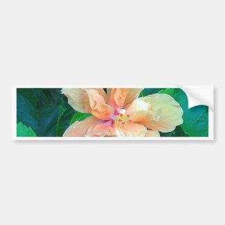 Pink Hibiscus Bumper Sticker