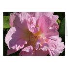 Pink Hibiscus Card 5X7