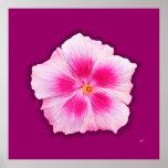 Pink Hibiscus - Custom Print