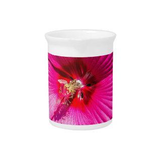 Pink Hibiscus Drink Pitcher