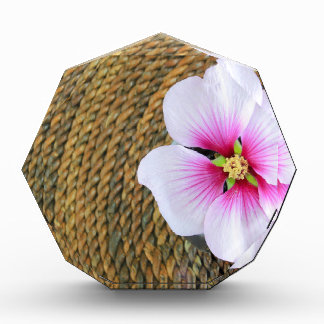 Pink Hibiscus Flower Acrylic Award