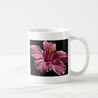 Pink hibiscus flower head, Majorca  flowers Classic White Coffee Mug