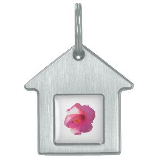 pink hibiscus flower image pet tag