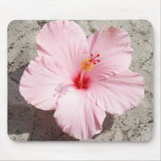 Pink Hibiscus Flower Mousepad