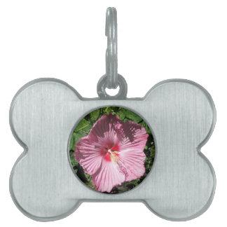 Pink Hibiscus Flower Pet Name Tag