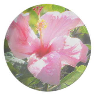Pink Hibiscus Flower Party Plates