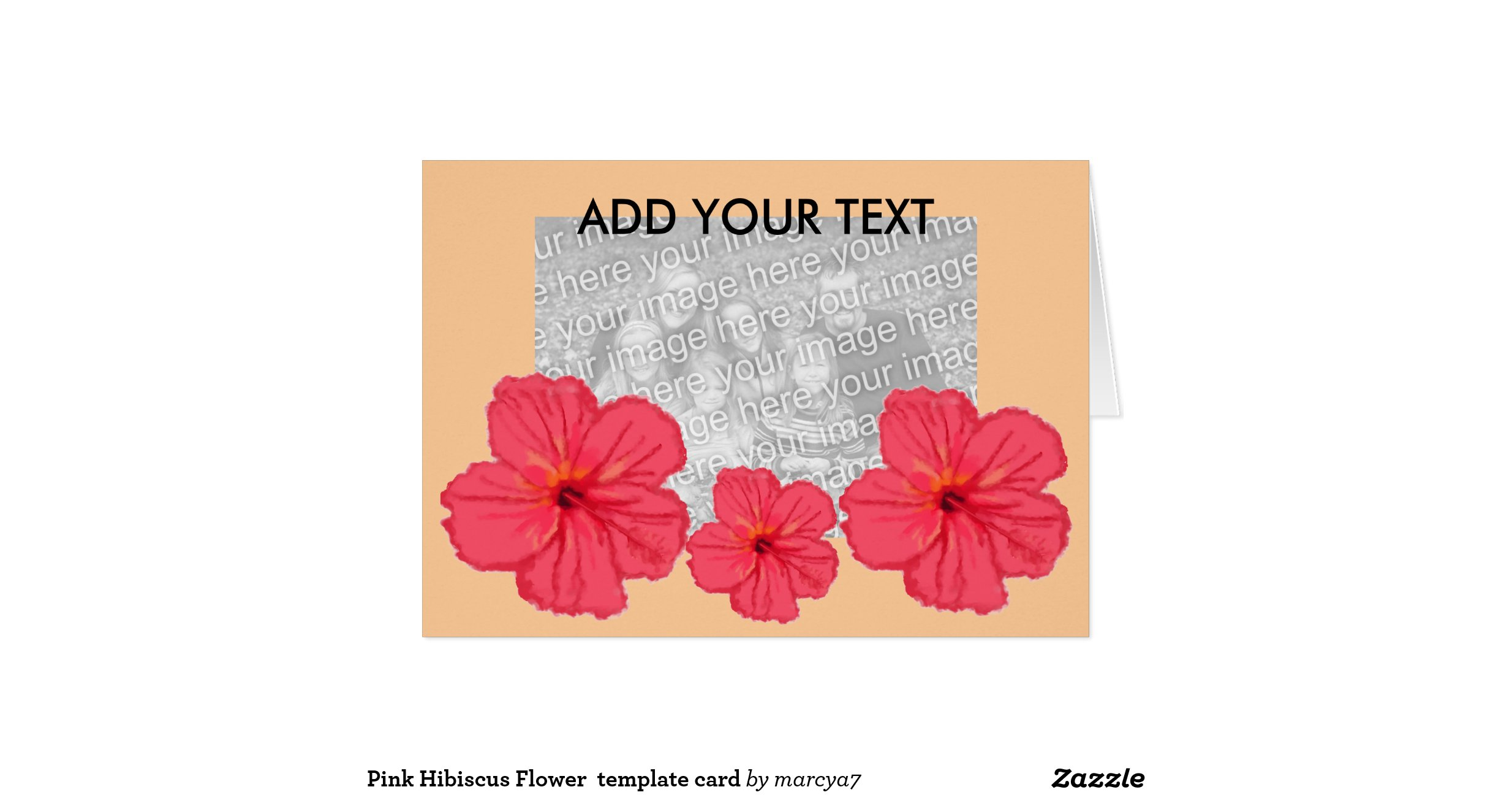 Hibiscus card template 28 images congratulations card design hibiscus card template by pink hibiscus flower template card zazzle izmirmasajfo