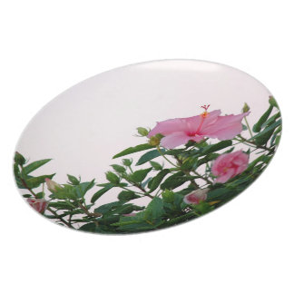 Pink Hibiscus Flowers Dinner Plate