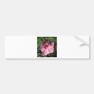 PINK Hibiscus HAPPY BIRTHDAY Bumper Sticker