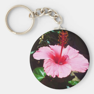 Pink Hibiscus In The Sun Key Chain