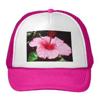 Pink Hibiscus In The Sun Trucker Hat