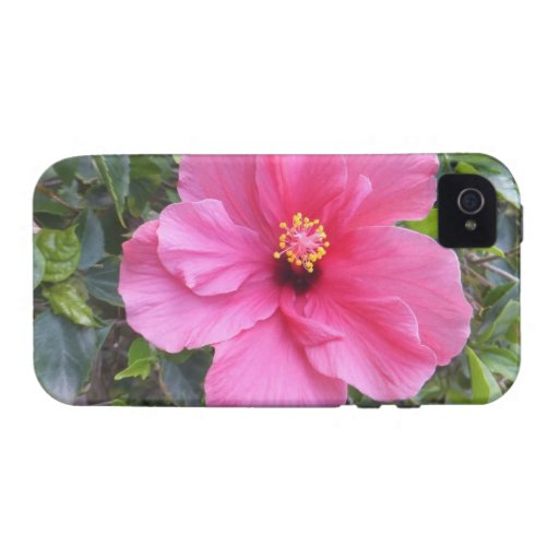 Pink Hibiscus iPhone 4 Case-Mate iPhone 4 Cover