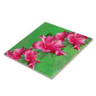 Pink Hibiscus Lei Tile