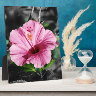 Pink Hibiscus Photo Plaque