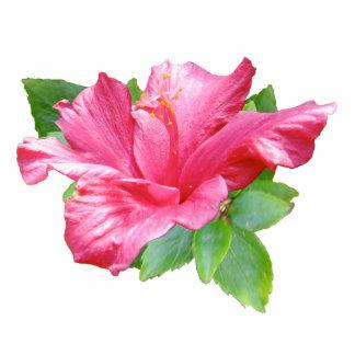 Pink Hibiscus Photo Sculpture Pin