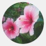 pink hibiscus round sticker
