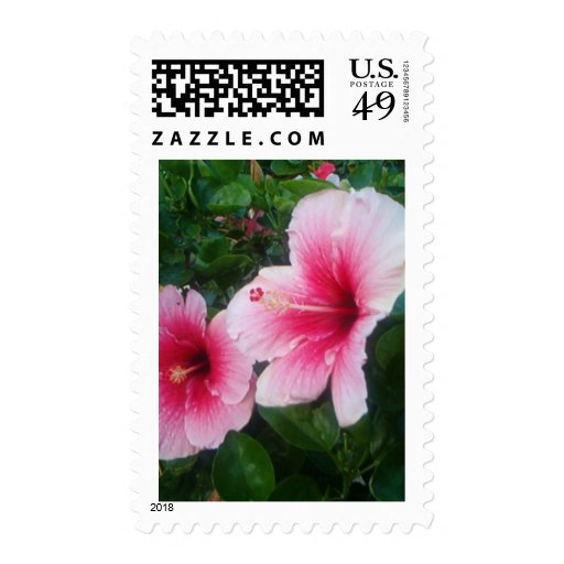 pink hibiscus stamps