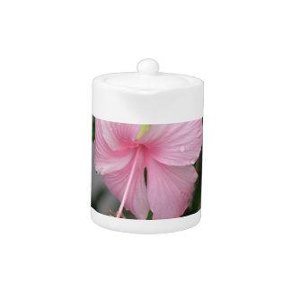 Pink Hibiscus  Teapot