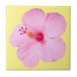 Pink Hibiscus Tropical Flower Ceramic Tile