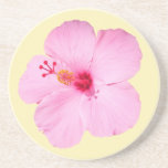Pink Hibiscus Tropical Flower Coaster