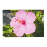 Pink Hibiscus Tropical Flower Placemat