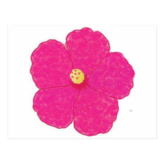Pink Hibiscus Tropical Flower Postcard