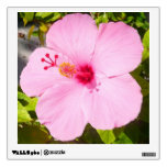 Pink Hibiscus Tropical Flower Wall Decal