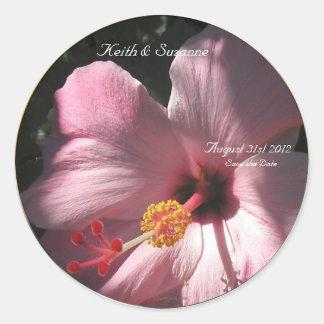 Pink Hibiscus Tropical Flowers Envelope Seals
