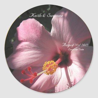 Pink Hibiscus Tropical Flowers Envelope Seals Classic Round Sticker