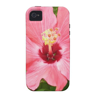 Pink Hibiscus Vibe iPhone 4 Cases