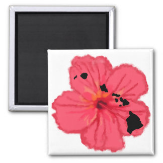 Pink hibiscus w Hawn Islands magnet