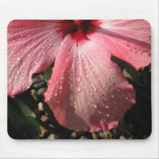 Pink Hibiscus Water Drops Mouse Pad