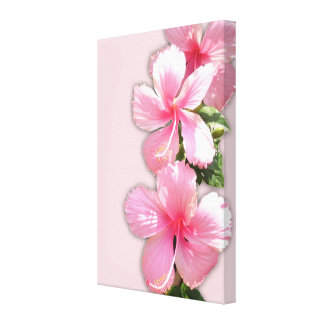 Pink Hibiscus Wrapped Canvas Gallery Wrapped Canvas