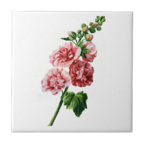 Pink Hollyhock Drawn From Nature Ceramic Tile