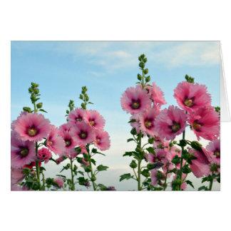 Pink Hollyhock Flowers Card
