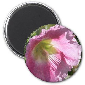 Pink Hollyhock Fridge Magnets