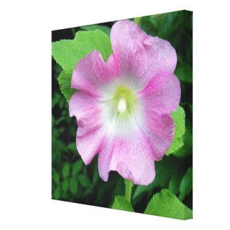 Pink Hollyhock Square Canvas Print