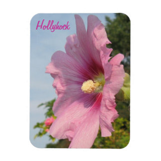 Pink Hollyhock - Tall Magnet