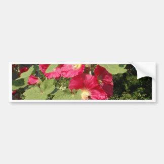 Pink Hollyhocks Bumper Sticker