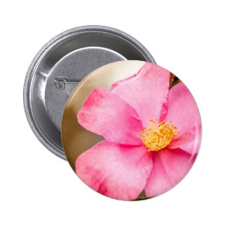 Pink Home Run Rose with Yellow Pinback Button