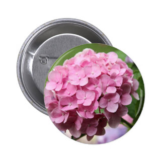 Pink Hortensia Pinback Button