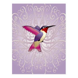 Pink Hummingbird Postcard