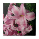 Pink Hyacinth Beautiful Spring Flower Ceramic Tile