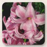 Pink Hyacinth Beautiful Spring Flower Drink Coaster