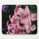 Pink Hyacinth Beautiful Spring Flower Mouse Pad