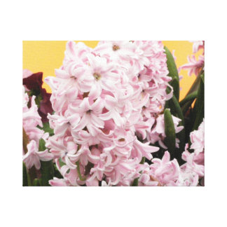 Pink Hyacinth Flower Gallery Wrap Canvas
