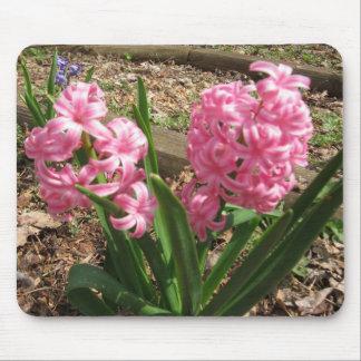 Pink Hyacinth Flower Mousepad