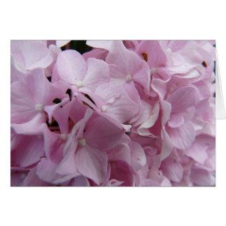 Pink Hydrangea Blank Note Card