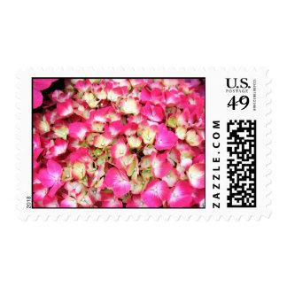 Pink Hydrangea Bouquet Postage Stamp