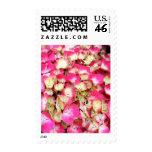 Pink Hydrangea Bouquet Stamp